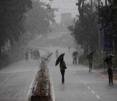 विदर्भ में बेमौसम बारिश से पेड़ गिरे, कई इलाकों में बिजली आपूर्ति खंडित