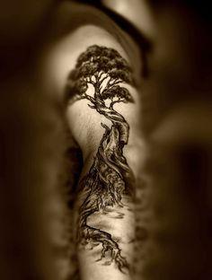 tree sleeve   Tumblr