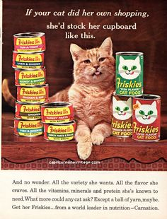 Vintage 1966 Friskies Cat Food Magazine Ad Orange Cat Kitsch Advertising Retro Room Wall Decor Cute Kitty Collect Frame or use for Crafting by CapricornOneEphemera on Etsy