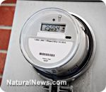 Police now accompanying Smart Meter installations: Two homeowners arrested for saying NO!    Learn more: http://www.naturalnews.com/038966_smart_meters_homeowners_police.html##ixzz2K5ckWqTu