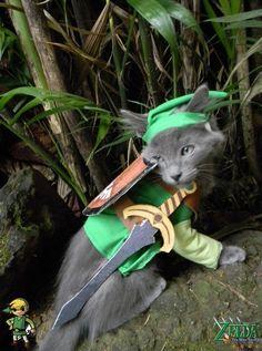 cosplay-legend-of-zelda-link-cat-costume-01