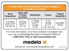 Medela Milk Storage Guidelines Magnet for sale online Store Breastmilk, Freezing Breastmilk, Breast Milk Bottles, Baby Food Storage, Lactation Consultant, Mommy Workout, C 18, Breastfeeding And Pumping, Pregnancy