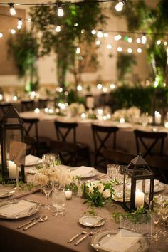 An indoor garden with potted trees, ferns, downtown abbey inspired arrangements with lanterns and lights throughout.