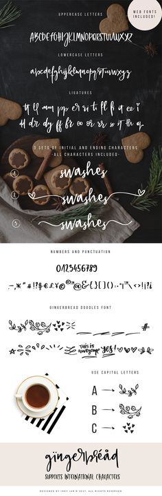 Gingerbread Font Duo + 9 Logos by Inky Jar Design Studio on @creativemarket Gingerbread is a bouncy, hand lettered font duo with lots of swashes and illustrations. It has 2 additional sets of stylistic alternates of beginning and ending letterforms.  As this font is perfect for feminine brands, I provided a set of 9 premade logo templates for you to use for yourself or your clients. [ad]