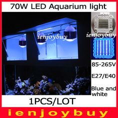==> [Free Shipping] Buy Best 1pcs/lot 70W LED Aquarium Fish Tank Lamp Reef Coral Hood Blue White Grow Light in Pet Supplies Fish & Aquariums Online with LOWEST Price | 1887181896