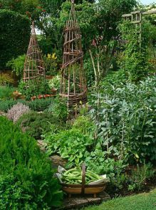 French Potager Garden 11