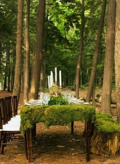 A lush greenery table runner is an awesome way to refresh your table décor. Get some greenery, moss and leaves and create a wonderful table decoration! Decoration Evenementielle, Table Decorations, Place Settings, Table Settings, Outdoor Settings, Enchanted Forest Wedding, Enchanted Forest Decorations, Forest Wedding Decorations, Wedding In Forest