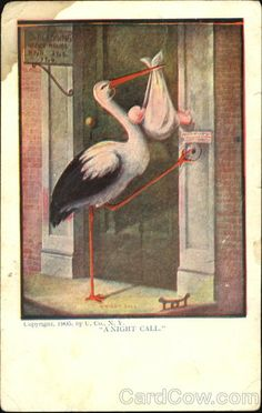 Divided Back Postcard A Night Call Stork Babies Vintage Baby Pictures, Scrapbooks, Baby Stork, Found Art, Vintage Birthday, Baby Shower Cards, Assemblage Art, Baby Art, Baby Scrapbook