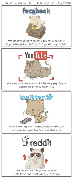 The state of Internet in rather the state of social media is explained with the help of cats in pictures. Social Media Humor, Social Networks, Social Media Marketing, Online Marketing, Cartoon Gifs, Branding, Daily Activities, Grumpy Cat, Socialism