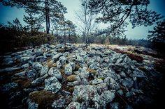 Onnenmäen hautaröykkiöt Kiskossa Aaljoella sijaitsee suuret laakeat kalliot nimeltään Onnenmäki. Onnenmäeltä on löytynyt kolme muinaista hautaröykkiötä, joista kaksi sijaitsee aivan Onnenmäen korkeimmalla laella. Helposti löydettävissä on kaksi kallion laella sijaitsevaa röykkiötä joiden koot ovat 6,5 x 6,5 m ja 9 x 8 m.   http://www.naejakoe.fi/luontojaulkoilu/onnenmaen-hautaroykkiot/ #salo #visitsalo #visitfinland