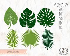 Tropical plants Leaves leaf philodendron SVG PNG EPS Dxf Pdf for cricut silhouette studio cut file vinyl decal stencil template Free Svg Files Monogram, Cricut Monogram, Free Monogram, Free Svg Cut Files, Monogram Fonts, Svg Files For Cricut, Monogram Letters, Tropical Plants, Tropical Leaves