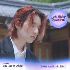 #day6 #jae Jae Day6, Asia