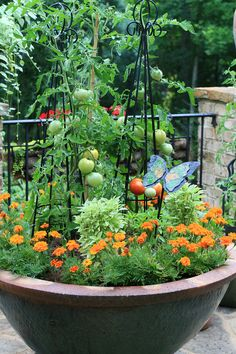 Tomatoes and marigolds. I'm not much for marigolds but this looks very pretty.