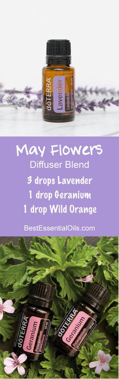 May Flowers doTERRA Diffuser Blend