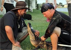 Gator Boys : Photo Gallery Animal Planet: Photos: Animal Planet