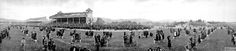 Racegoers at Trentham Race Course, Wellington, New Zealand. Photograph by Robert Percy Moore. Circa mid-1920s.