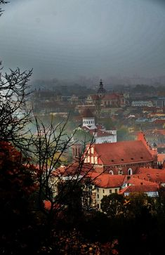 Foggy Morning, Vilnius, Lithuania Copyright: Joanna Bujczenko