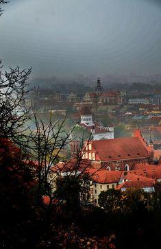 Foggy Morning, Vilnius, Lithuania Copyright: Joanna Bujczenko