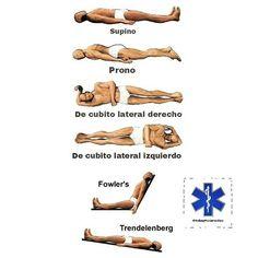 Resultado de imagen de posiciones anatomicas fowler