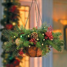"""Improvements Merry and Bright Lighted Christmas Hanging Basket-24"""" (1,600 INR) ❤ liked on Polyvore featuring home, home decor, holiday decorations, christmas decor, christmas door decor, christmas garland, christmas hanging basket, christmas urn filler, christmas wreath and entryway christmas decor"""