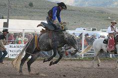 Saddle bronc   Stacey & Jim Boyd   Flickr