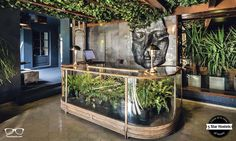 Onas Hostel's reception desk with glass and plants