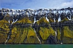 Norway. Svalbard. The high cliffs of Svalbard drop steeply into the sea, the…