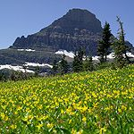 At the top of Going to the Sun road in Glacier National Park - The closest thing to Heaven here on earth!