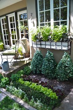 Kitchen Garden of herbs/edibles - right off the kitchen.i like the long rows of herbs. Edible Garden, Lawn And Garden, Vegetable Garden, Small Herb Gardens, Outdoor Gardens, Victory Garden, Garden Spaces, Spring Garden, Garden Projects