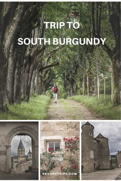 Top ten reasons for a trip to South Burgundy.