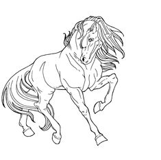 Line Drawings Of Animals | ... digital art drawings paintings animals free lines for you to
