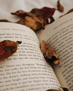 Image result for book brown leaves