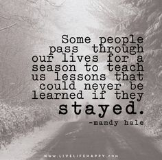 Some people pass through our lives for a season to teach us lessons that could never be learned if they stayed. - Mandy Hale