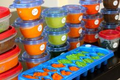 Baby Food101: Where to begin and Pureeing in Bulk #babyfood http://thediva-dish.com