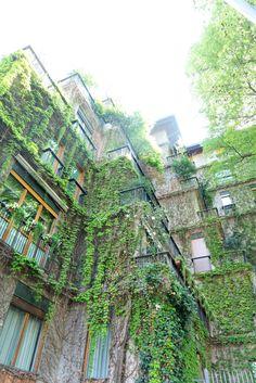 JOELIX.com | Green Milan