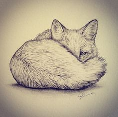 A.M.Y . D.O.V.E.R | Christmas present commission of a peeping fox. ...