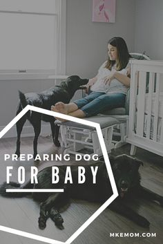 Preparing your dog for baby, preparing dog for baby, how to