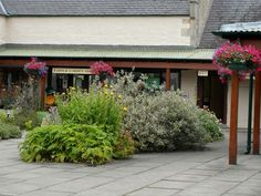 Logie Estate, in the beautiful Findhorn Valley in Scotland, hosts salmon fishing, events & Logie Steading Visitor Centre: a great day out. House Gardens, Great Days Out, Salmon Fishing, Entrance, Home And Garden, Plants, Beautiful, Entryway, Flora