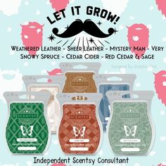 Wickless candles and scented fragrance wax for electric candle warmers and scented natural oils and diffusers. Shop for Scentsy Products Now! Scented Wax Warmer, Scented Wax Melts, Smells Like Teen Spirit, Wax Warmers, Fragrance Mist, Scentsy, Things To Sell, Graphics, Men