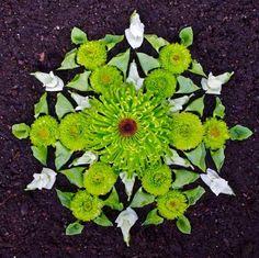 Flower Circles. Celestial Elf has so many pinned.