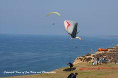 Gliders off the coast in La Jolla