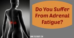 Do you suffer from Adrenal Fatigue? Learn the signs and how to nourish the adrenals naturally.
