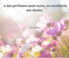 Perfumes amei perfumes importados
