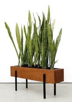 Suporte para plantas em madeira