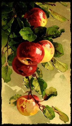ideas for fruit painting watercolor catherine klein Apple Painting, Fruit Painting, China Painting, L'art Du Fruit, Fruit Art, Watercolor Fruit, Watercolor Paintings, Art Floral, Pinturas Em Tom Pastel