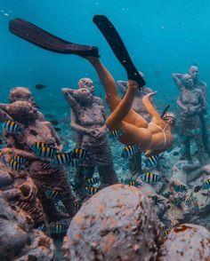 Underwater Photos, Underwater World, Underwater Photography, Voyage Bali, Destination Voyage, Coachella, Trekking, Hawaii Adventures, Cast Your Vote