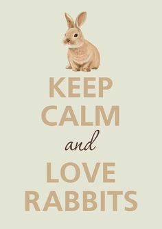 Bunny Cottage / keep calm quote in brown tan cream Funny Bunnies, Baby Bunnies, Cute Bunny, Bunny Rabbits, Lapin Art, Bunny Care, Some Bunny Loves You, House Rabbit, Rabbit Cages