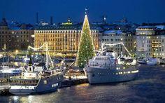 Albero a Stoccolma, Svezia