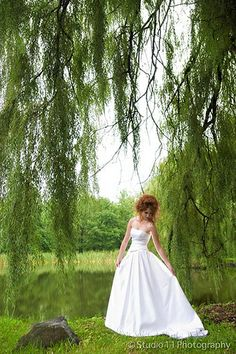 1000 images about willow trees on pinterest weeping white tree centerpieces for sale white lighted tree centerpieces