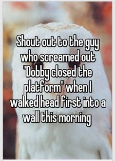 """Shout out to the guy who screamed out """"Dobby closed the platform"""" when I walked head first into a wall this morning. That guy has a sense of humor! Harry Potter Welt, Harry Potter Puns, Harry Potter Universal, Harry Potter Stories, No Muggles, Whisper Confessions, Yer A Wizard Harry, Def Not, Dobby"""